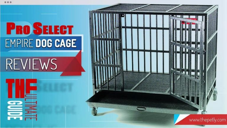 Proselect Empire Dog Cage Review 2020 – Worth Buying?