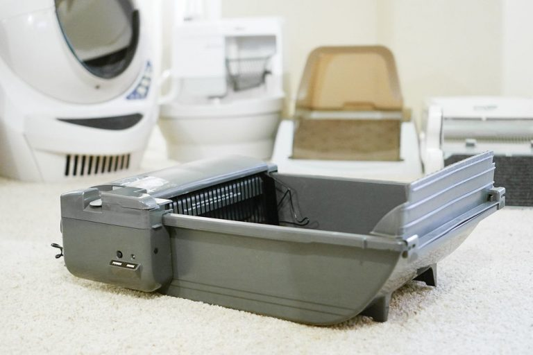 5 Best Self Cleaning Litter Boxes: For Multiple Cats (In 2021)