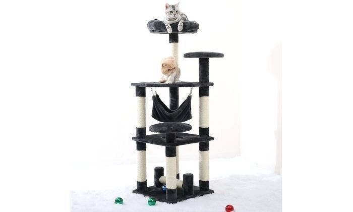 cats on scratching post