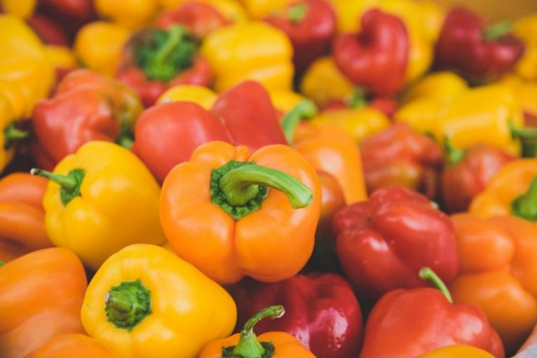 Can Dogs Eat Bell Peppers? Here's What You Need to Know First!