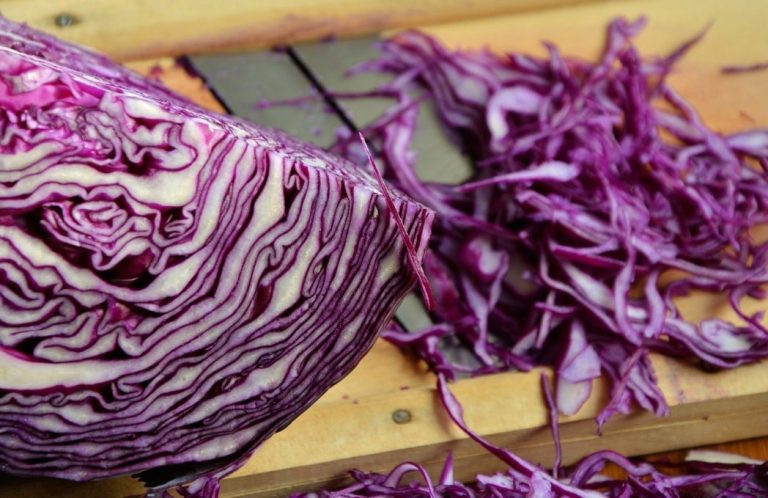 Can Dogs Eat Cabbage? [Surprising Facts About Cabbage for Dogs]